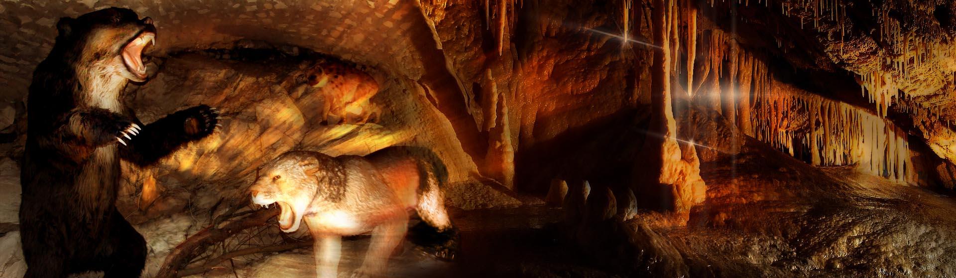 slide_jaskinia